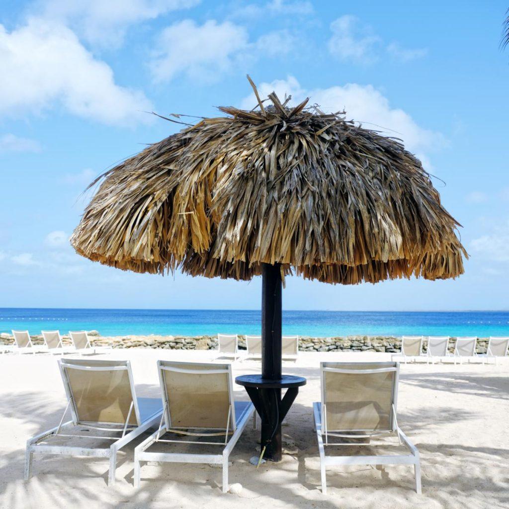 Plaza Beach Resort Bonaire Karibik Tauchen Kiten