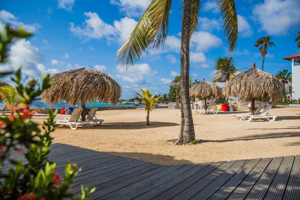 Plaza Beach Resort Bonaire Karibik Tauchen Strand