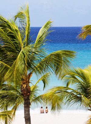 Aruba Tauchreisen Tauchen Urlaub
