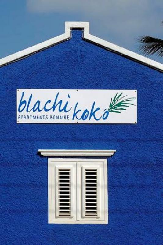 blachi koko apartments bonaire