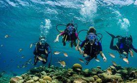 Tauchurlaub Karibik