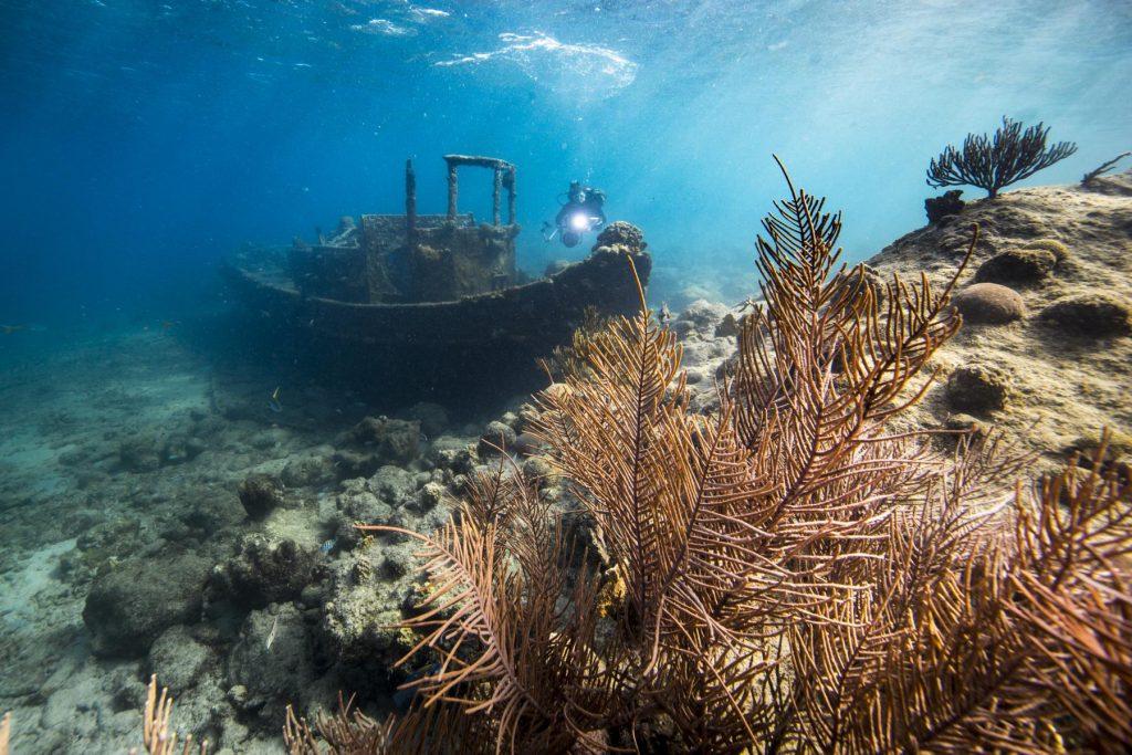 Tauchen auf Curacao