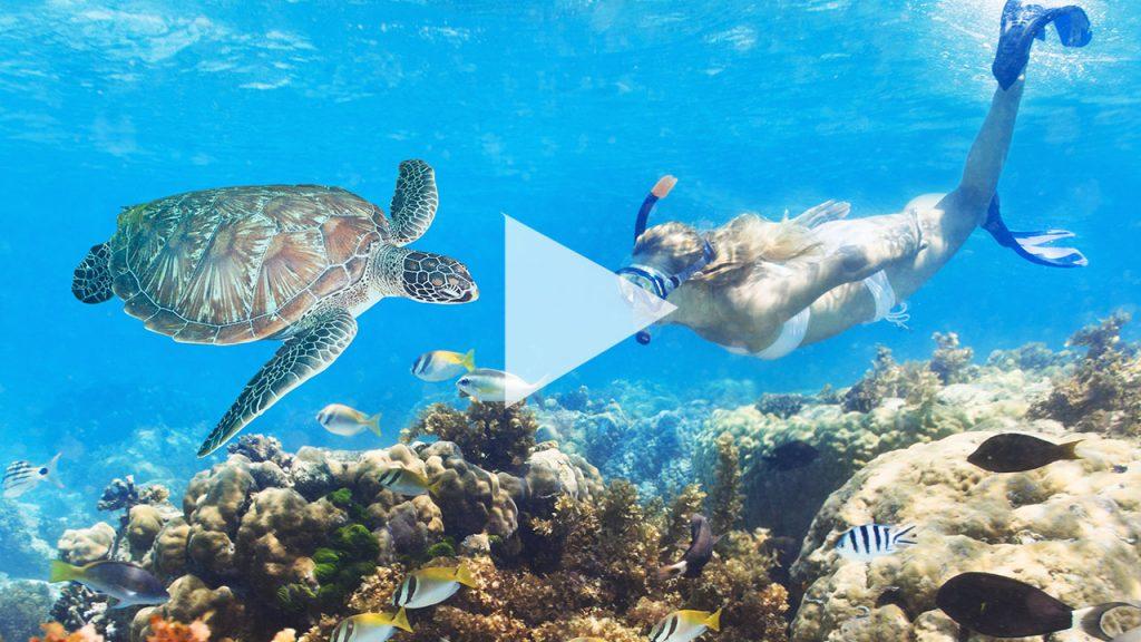Curacao in bewegten Bildern
