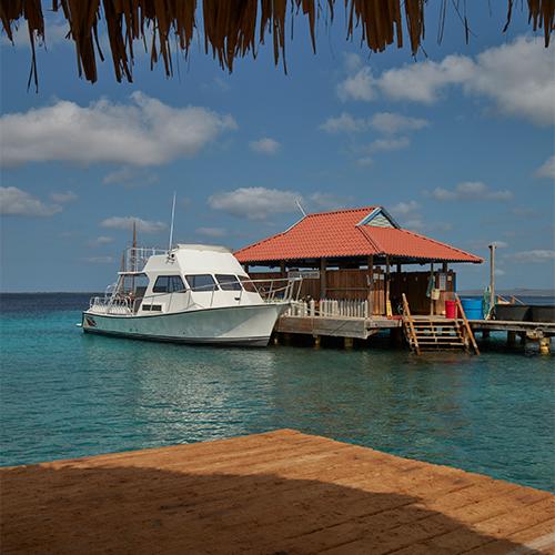 Divi Flamingo Bonaire divi dive boat