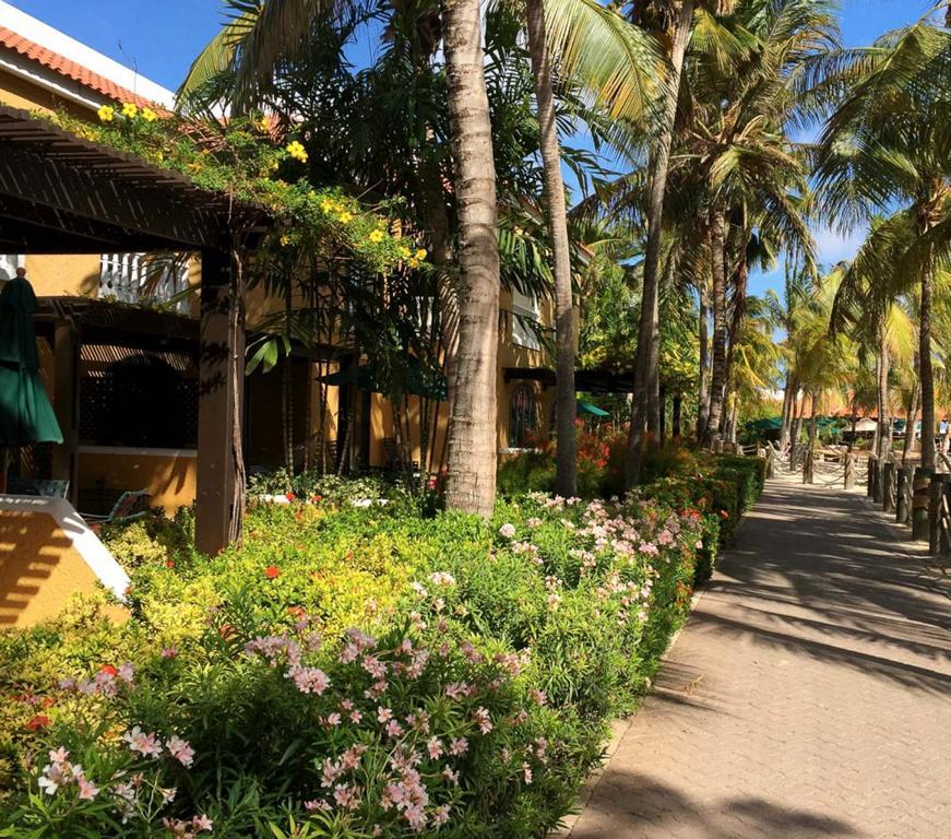 Harbour Village Bonaire Karibik Urlaub Tauchen